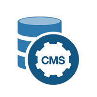 cms software development